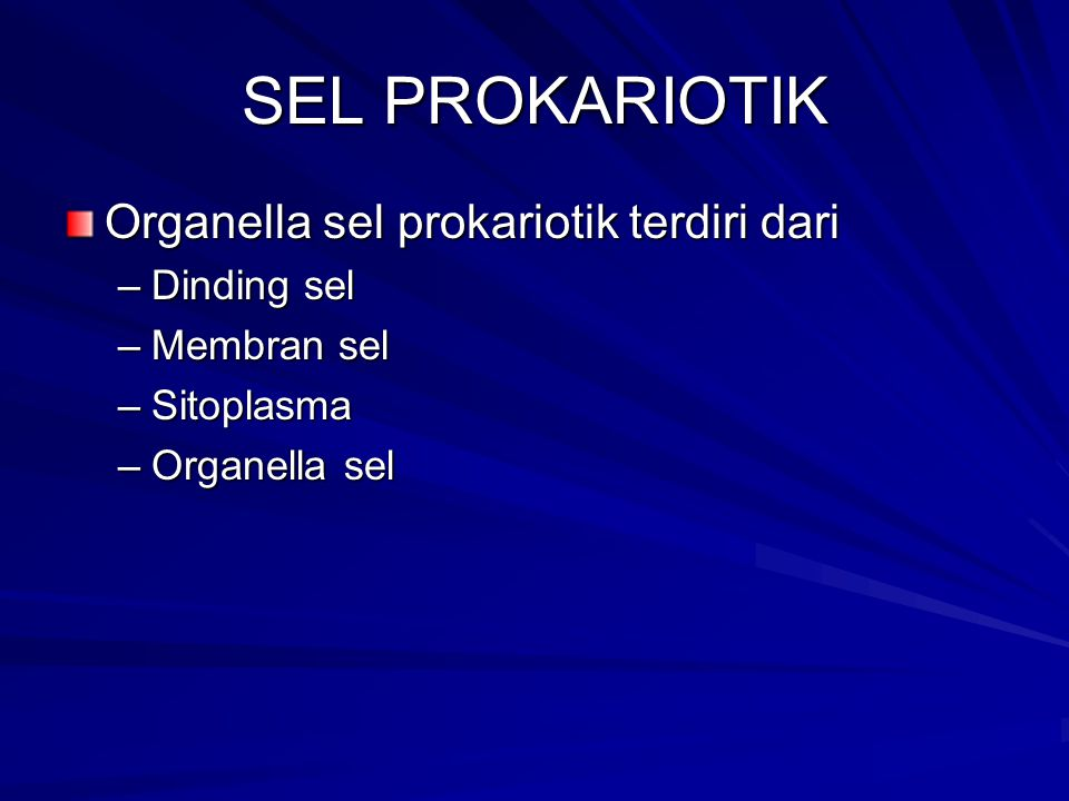 SEL PROKARIOTIK Organella sel prokariotik terdiri dari Dinding sel