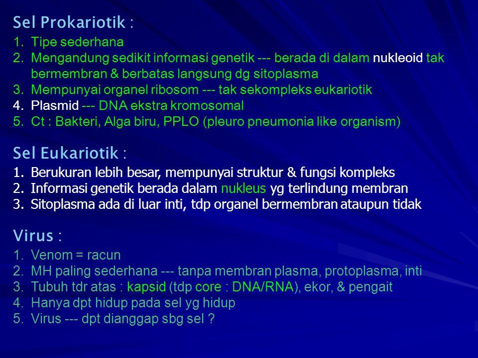 Sel Prokariotik : Sel Eukariotik : Virus : Tipe sederhana
