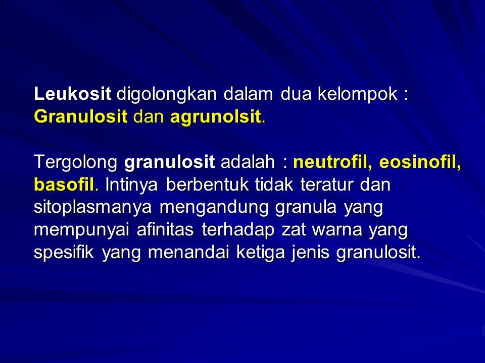 Leukosit digolongkan dalam dua kelompok : Granulosit dan agrunolsit