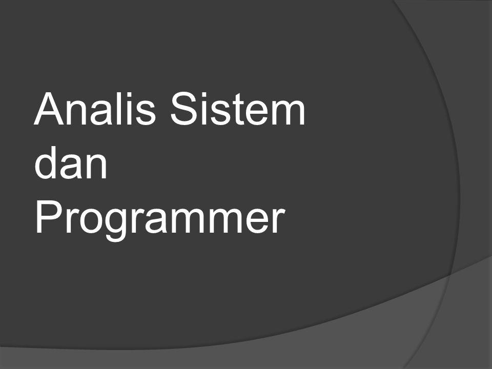 Analis Sistem dan Programmer