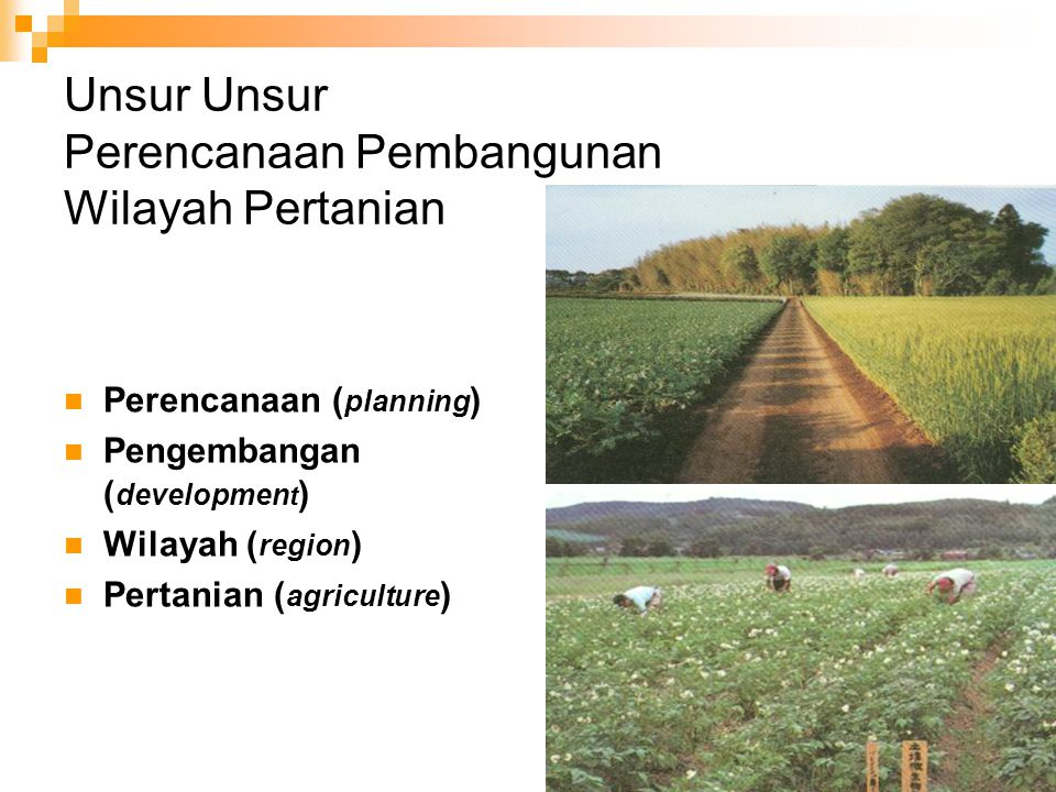 Unsur Unsur Perencanaan Pembangunan Wilayah Pertanian
