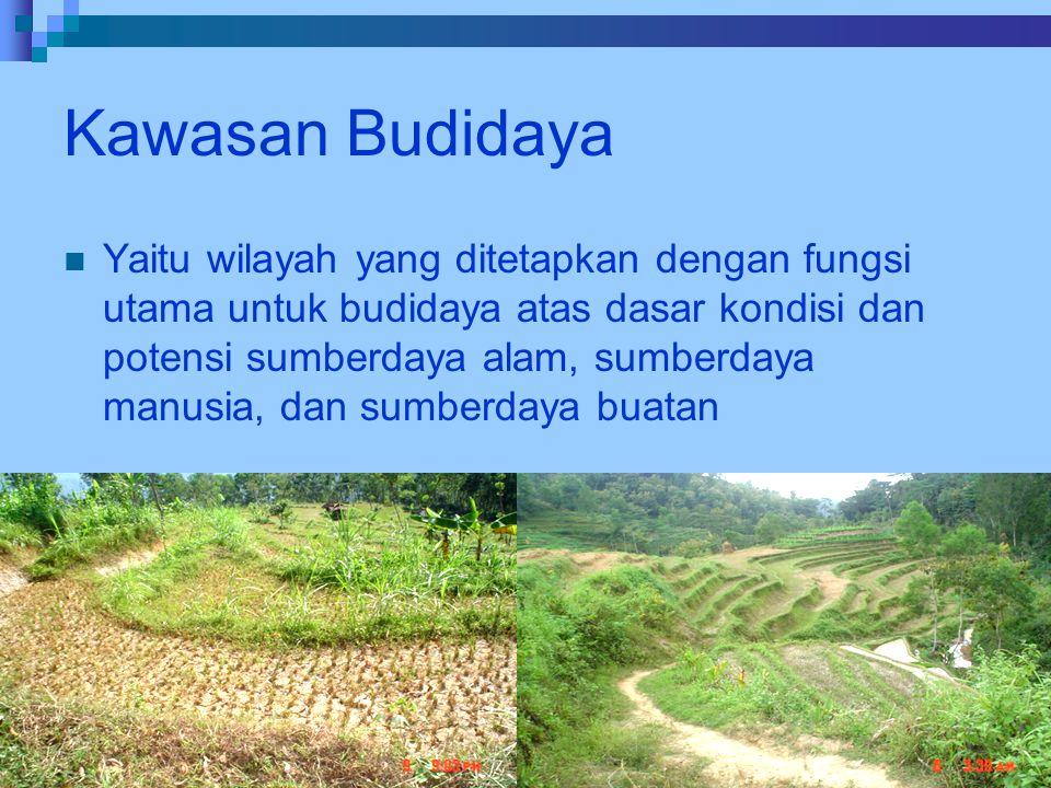 Kawasan Budidaya