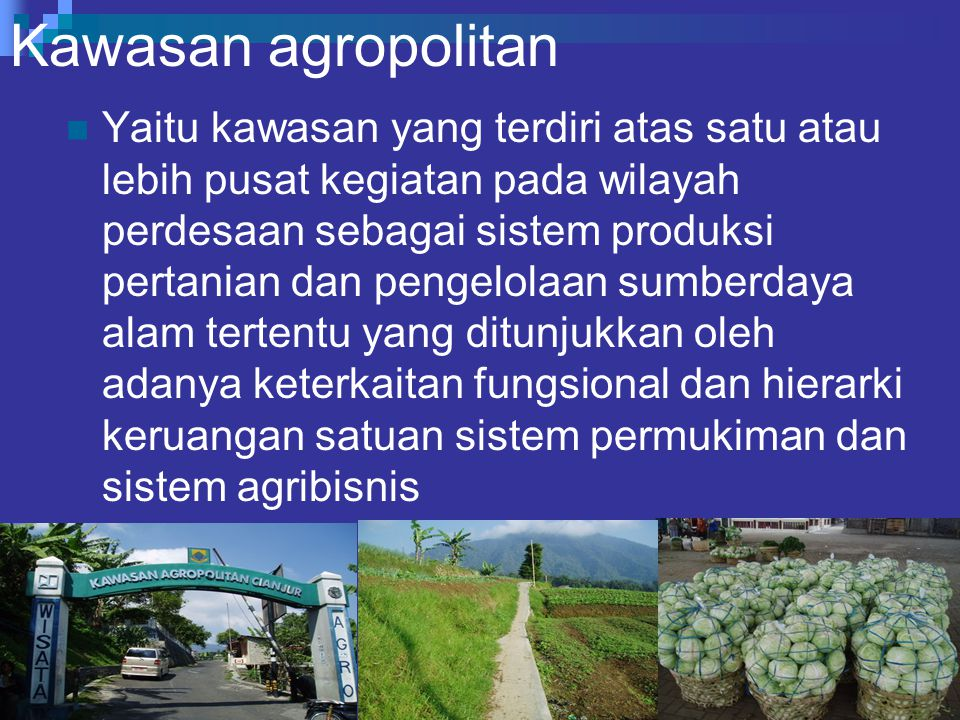 Kawasan agropolitan