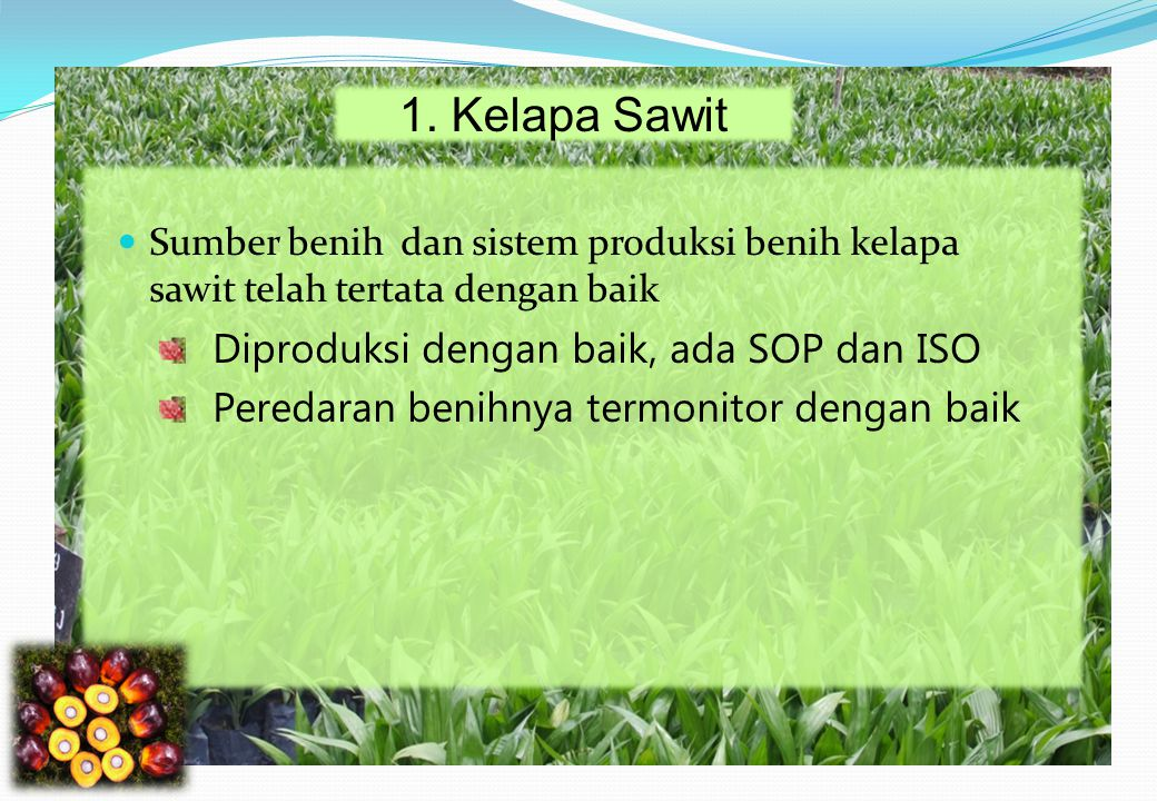 1. Kelapa Sawit Diproduksi dengan baik, ada SOP dan ISO