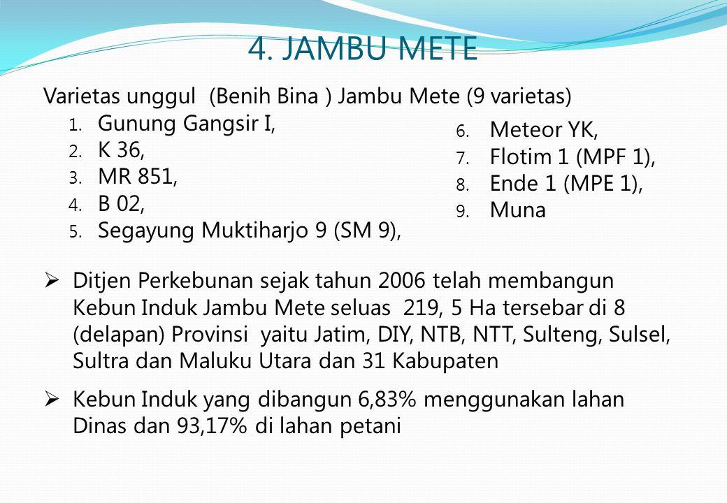 4. JAMBU METE Varietas unggul (Benih Bina ) Jambu Mete (9 varietas)