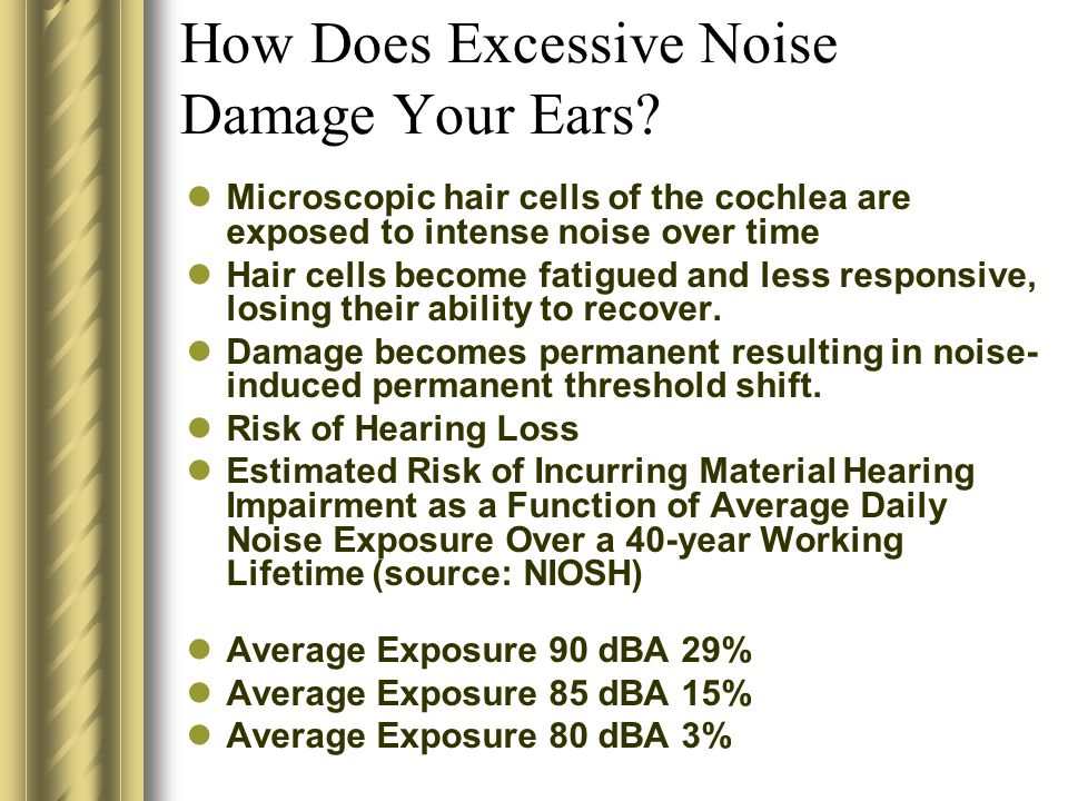 How Does Excessive Noise Damage Your Ears