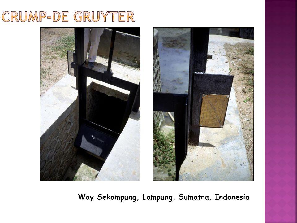Crump-de Gruyter Way Sekampung, Lampung, Sumatra, Indonesia
