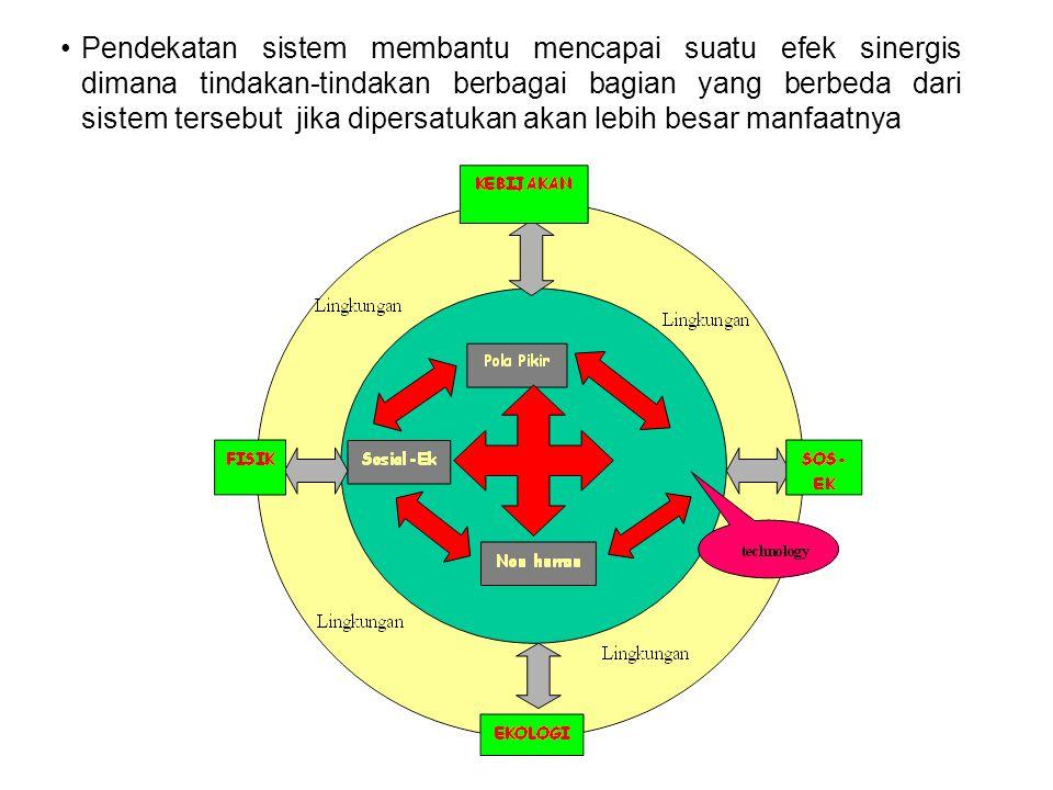 Pendekatan sistem membantu mencapai suatu efek sinergis dimana tindakan-tindakan berbagai bagian yang berbeda dari sistem tersebut jika dipersatukan akan lebih besar manfaatnya