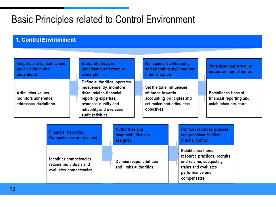 Basic Principles related to Control Environment