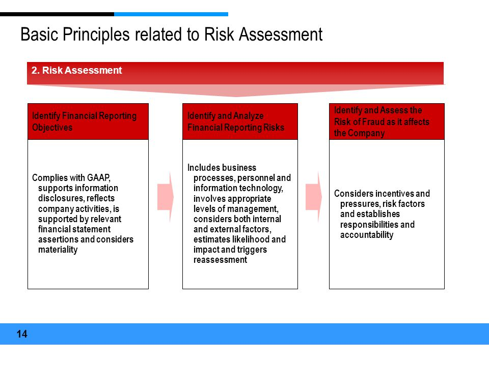 Basic Principles related to Risk Assessment