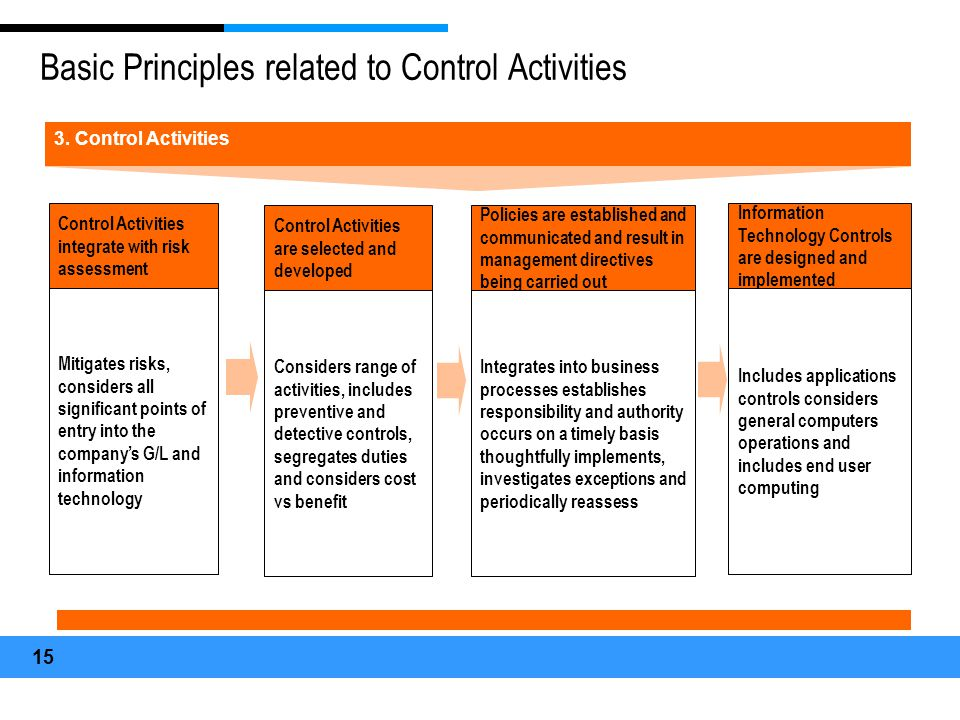 Basic Principles related to Control Activities