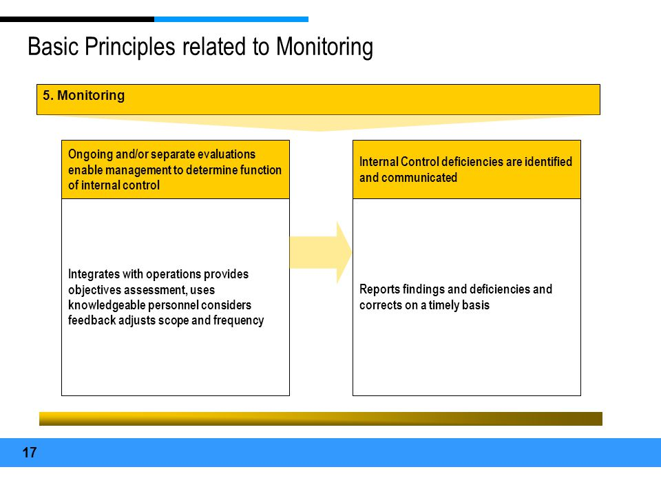 Basic Principles related to Monitoring