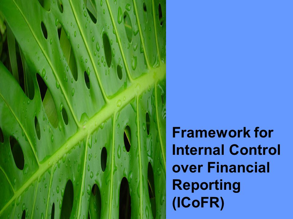 Framework for Internal Control over Financial Reporting (ICoFR)