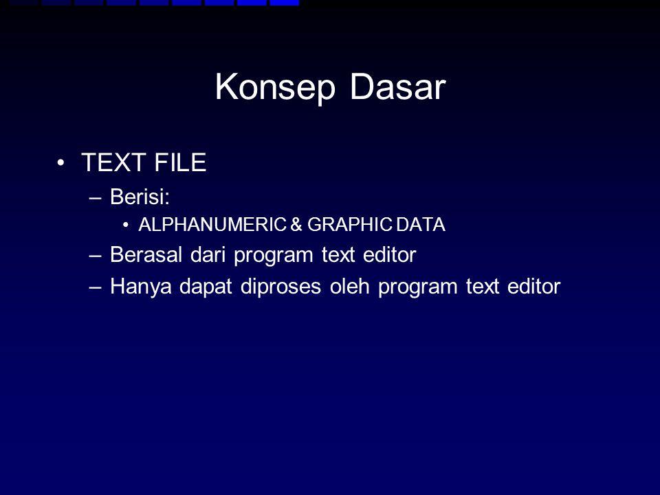 Konsep Dasar TEXT FILE Berisi: Berasal dari program text editor