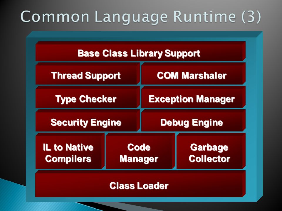 Common Language Runtime (3)