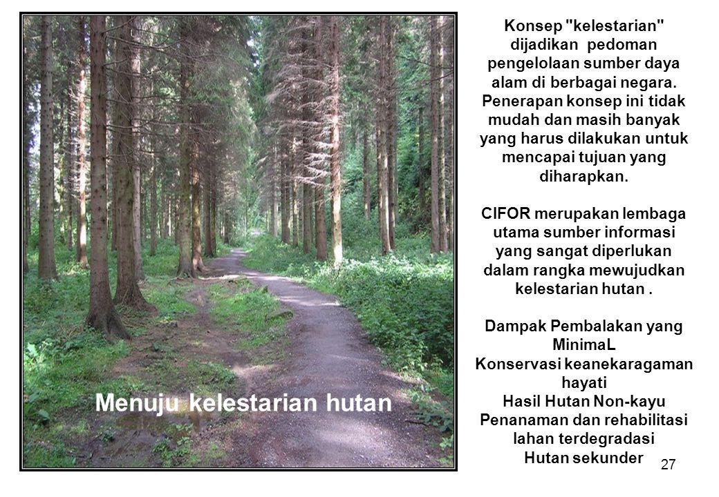 Menuju kelestarian hutan
