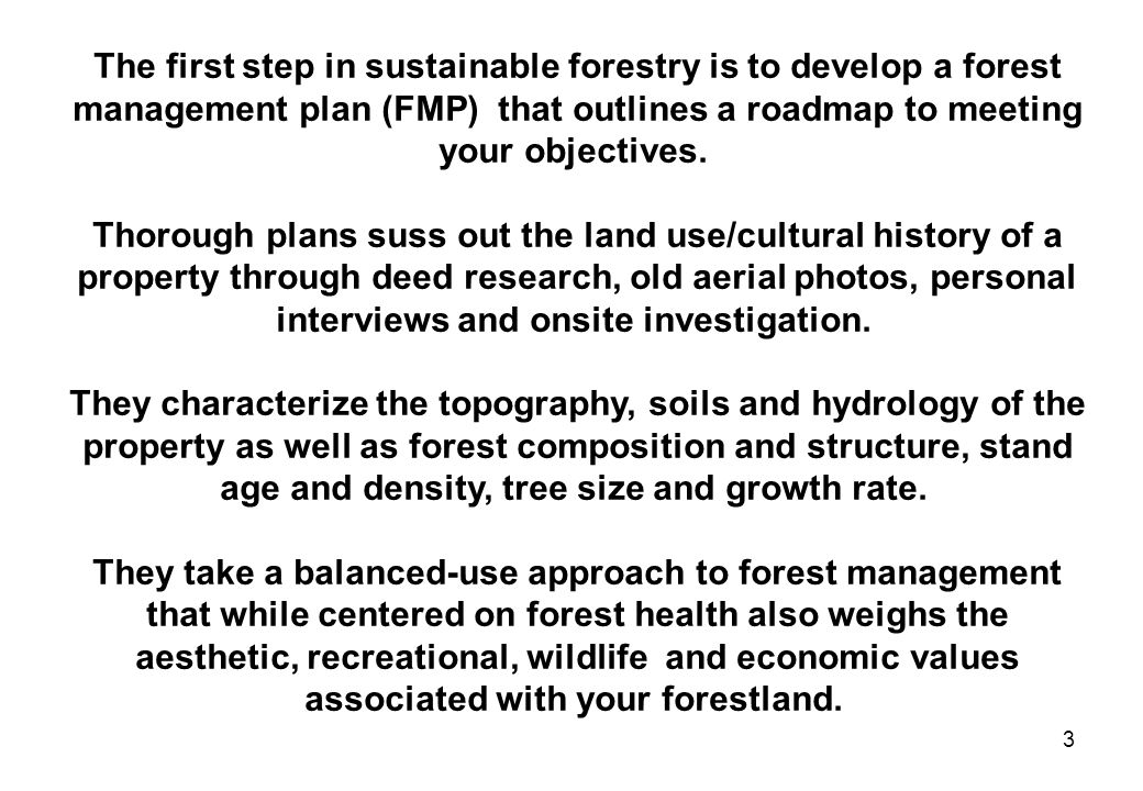 The first step in sustainable forestry is to develop a forest management plan (FMP) that outlines a roadmap to meeting your objectives.