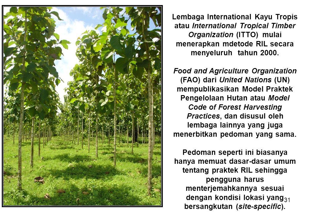 Lembaga International Kayu Tropis atau International Tropical Timber Organization (ITTO) mulai menerapkan mdetode RIL secara menyeluruh tahun 2000.