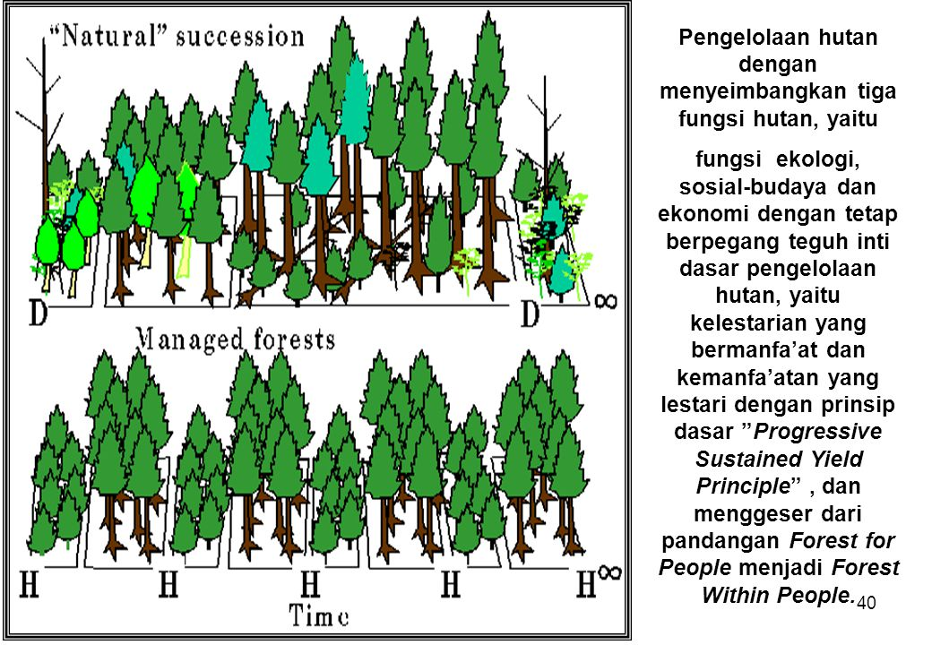 Pengelolaan hutan dengan menyeimbangkan tiga fungsi hutan, yaitu