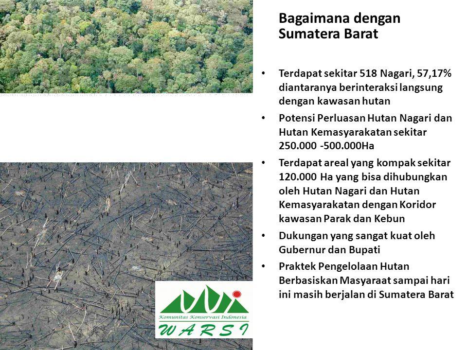 Bagaimana dengan Sumatera Barat