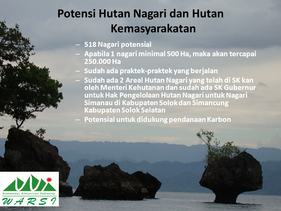 Potensi Hutan Nagari dan Hutan Kemasyarakatan
