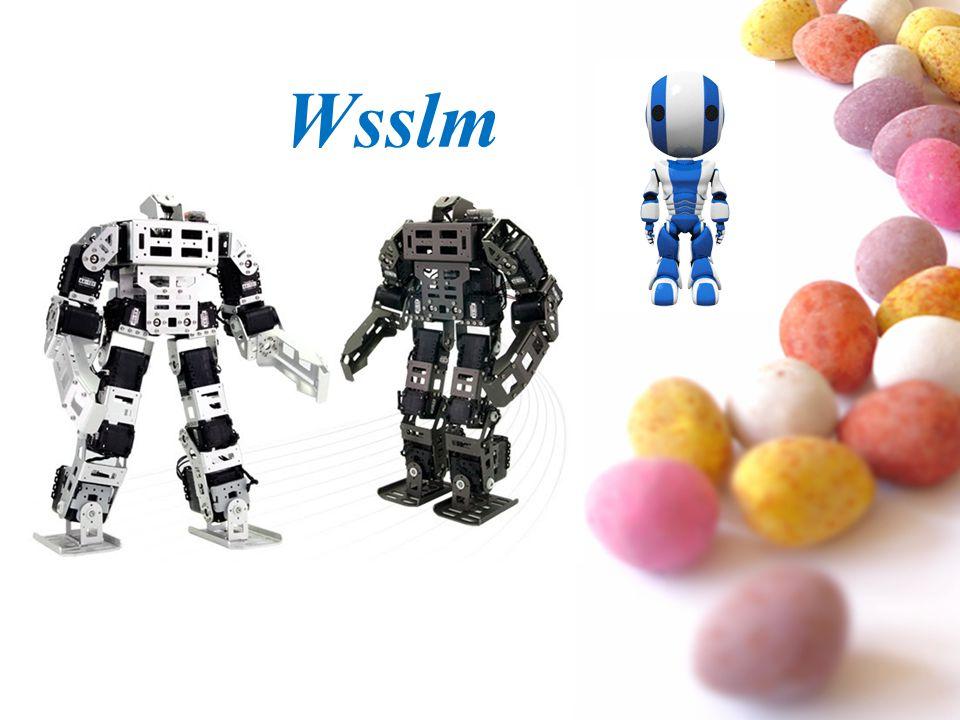 Wsslm