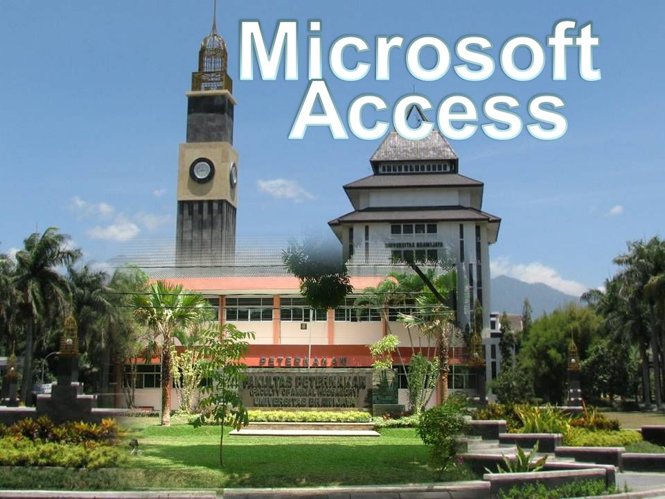 Microsoft Access emhanatsir Fapet UB 2009 emhanatsir Fapet UB 2009