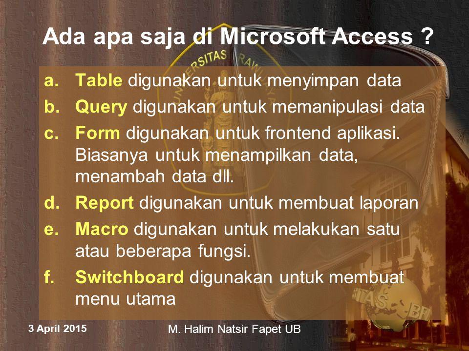 Ada apa saja di Microsoft Access