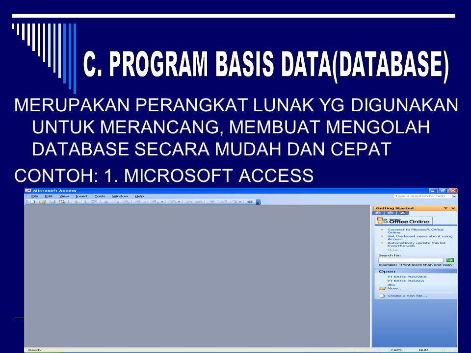 C. PROGRAM BASIS DATA(DATABASE)