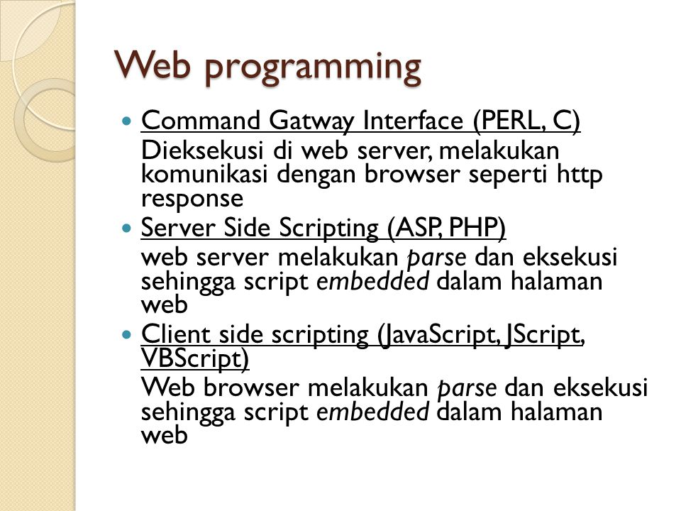 Web programming Command Gatway Interface (PERL, C)