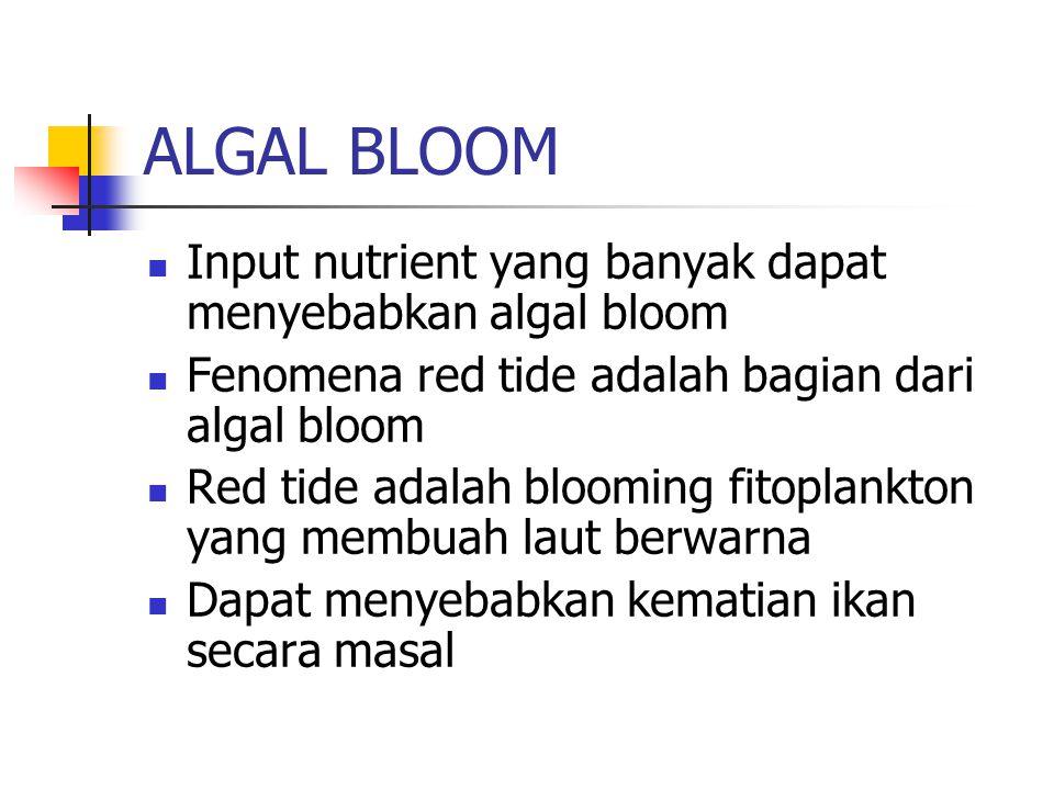 ALGAL BLOOM Input nutrient yang banyak dapat menyebabkan algal bloom