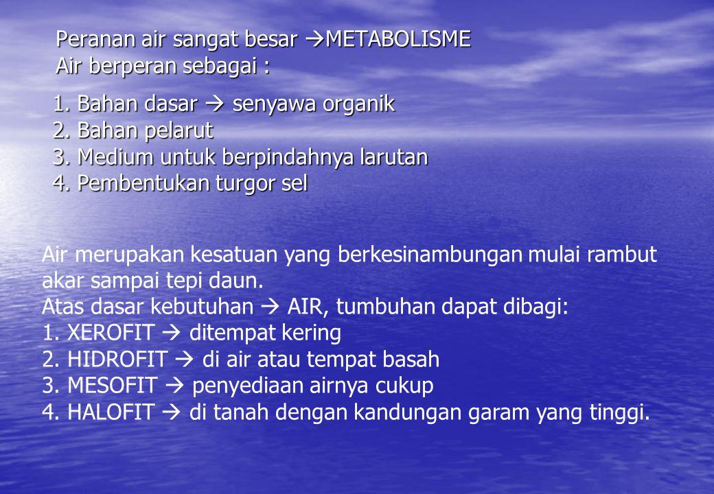 Peranan air sangat besar METABOLISME Air berperan sebagai :