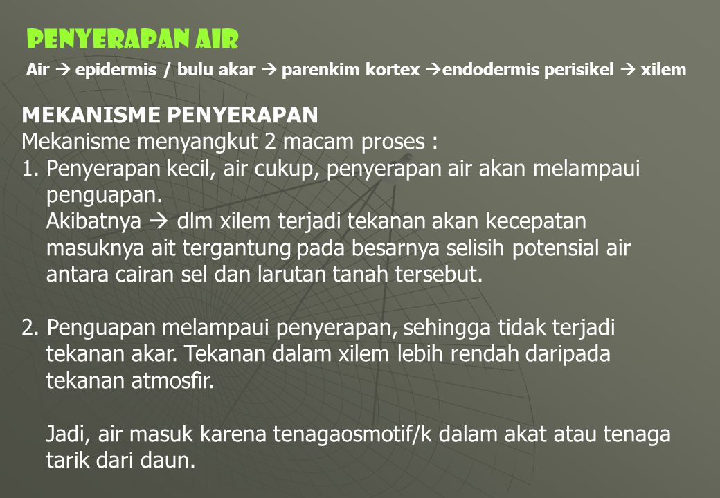 PENYERAPAN AIR MEKANISME PENYERAPAN