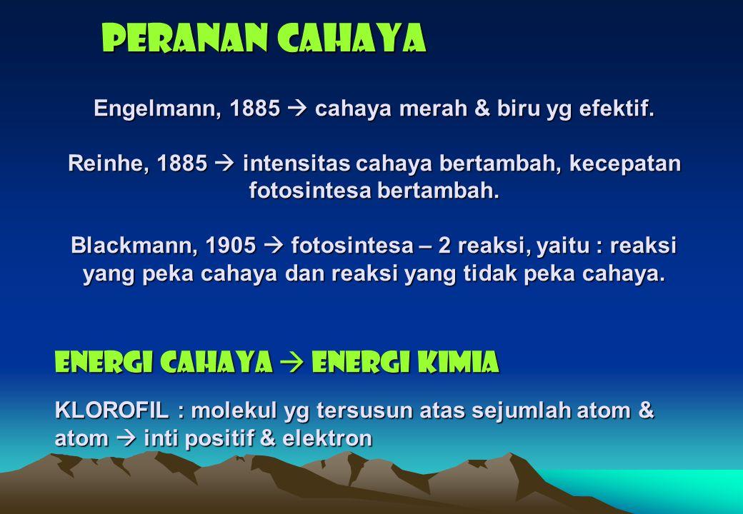 PERANAN CAHAYA