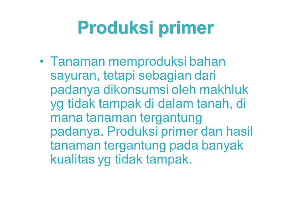 Produksi primer
