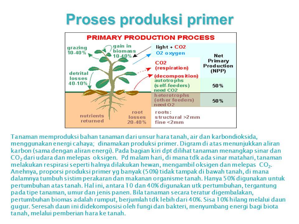 Proses produksi primer