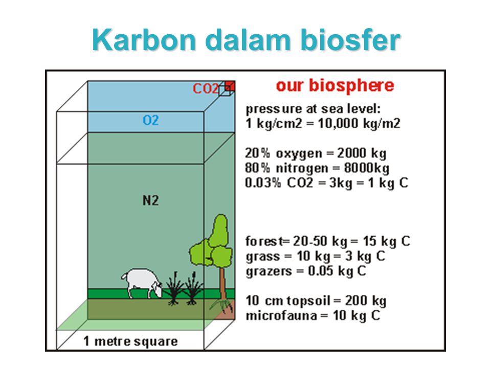 Karbon dalam biosfer