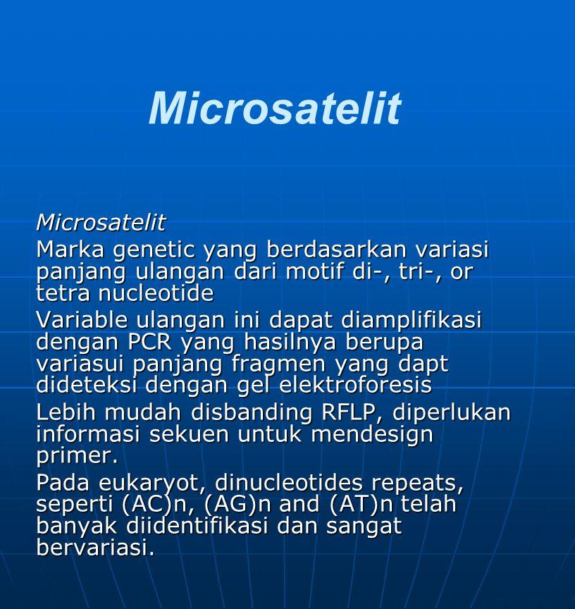 Microsatelit Microsatelit