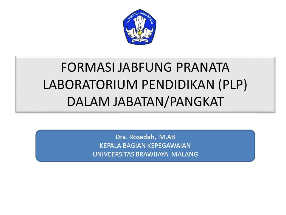 FORMASI JABFUNG PRANATA LABORATORIUM PENDIDIKAN (PLP) DALAM JABATAN/PANGKAT