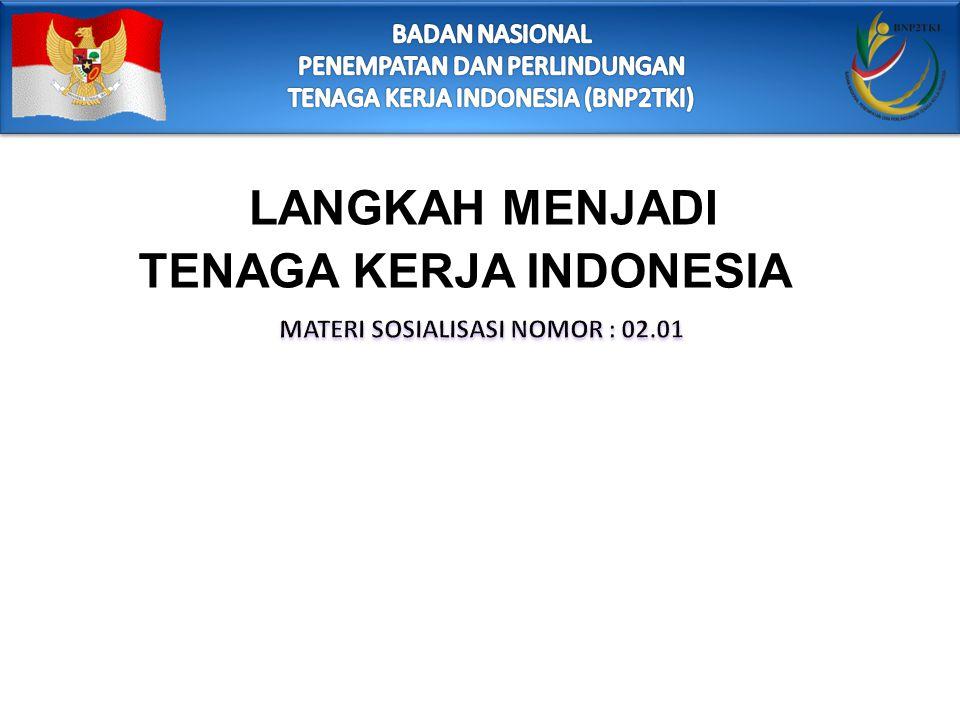 TENAGA KERJA INDONESIA MATERI SOSIALISASI NOMOR : 02.01