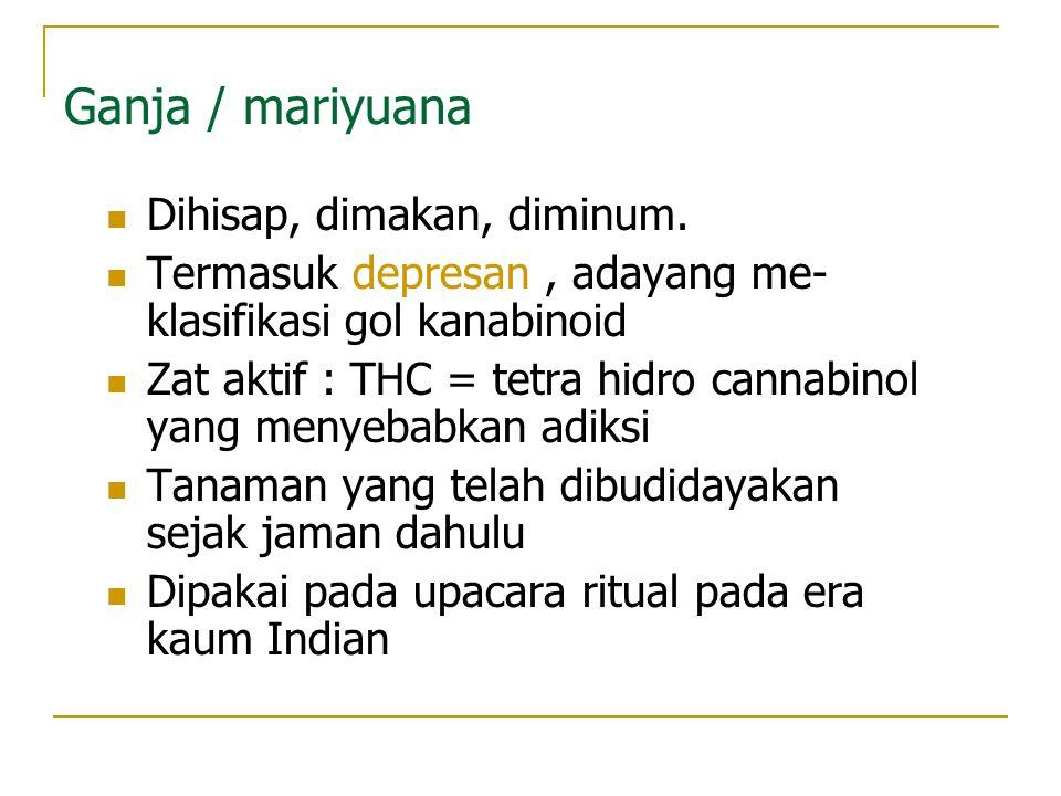 Ganja / mariyuana Dihisap, dimakan, diminum.