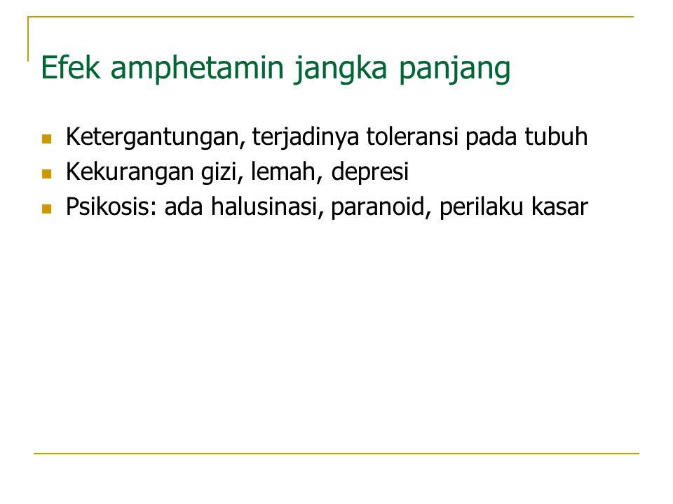 Efek amphetamin jangka panjang