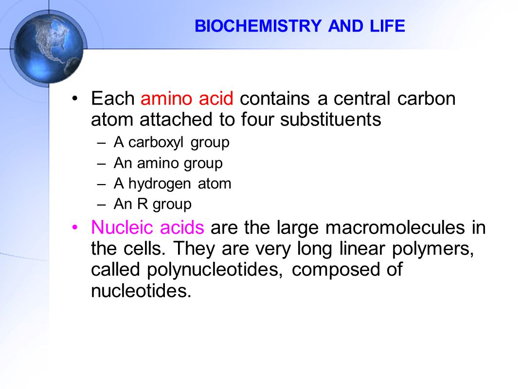 BIOCHEMISTRY AND LIFE Each amino acid contains a central carbon atom attached to four substituents.