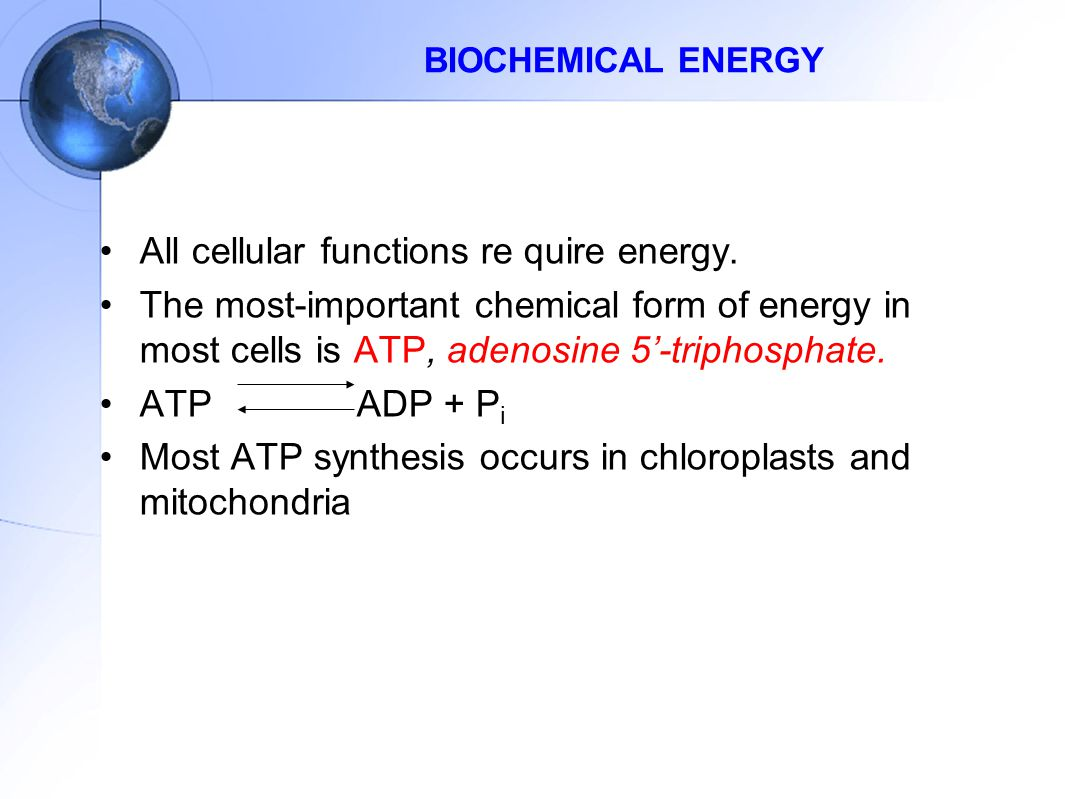 BIOCHEMICAL ENERGY All cellular functions re quire energy.
