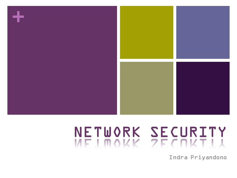 NETWORK SECURITY Indra Priyandono