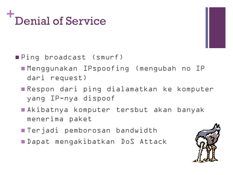 Denial of Service Ping broadcast (smurf)