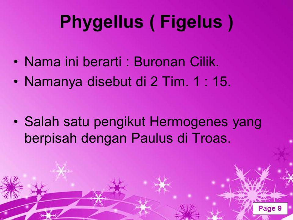 Phygellus ( Figelus ) Nama ini berarti : Buronan Cilik.