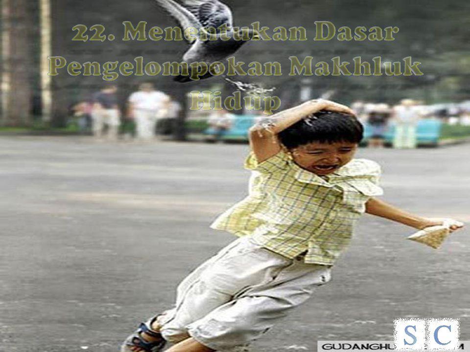 22. Menentukan Dasar Pengelompokan Makhluk Hidup