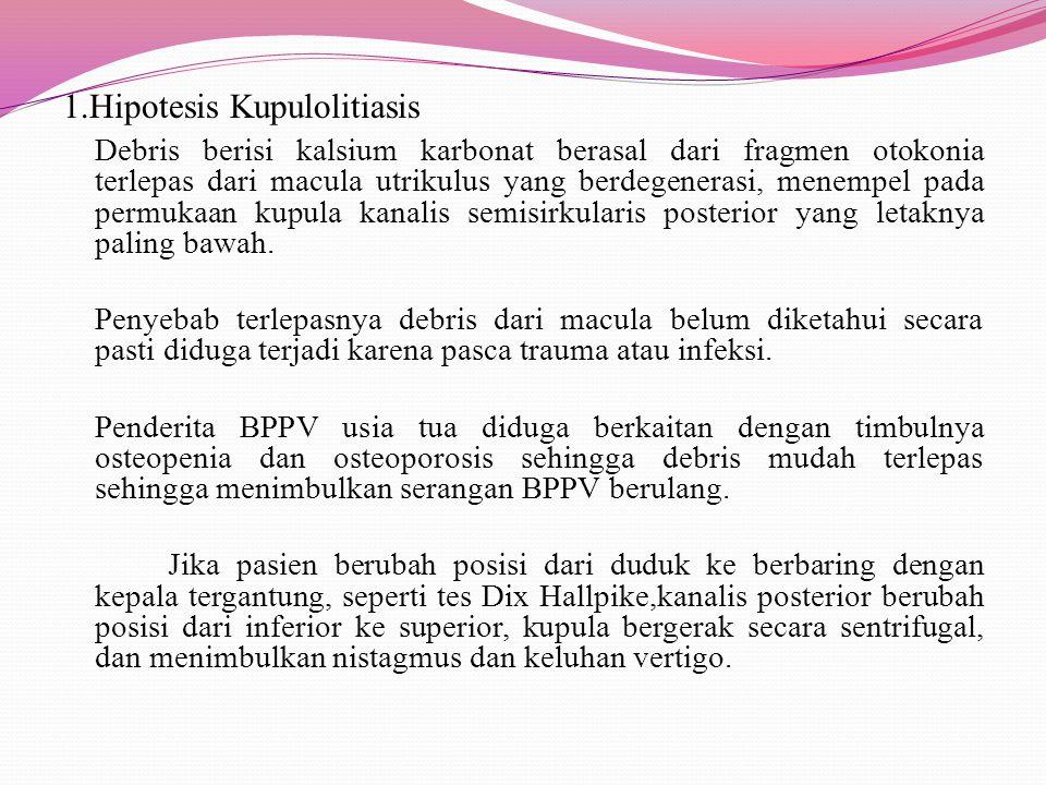 1.Hipotesis Kupulolitiasis