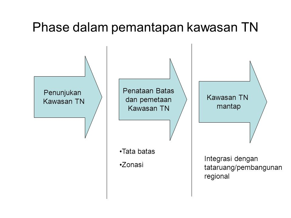 Phase dalam pemantapan kawasan TN